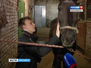 Андрей Кубасов с ДЦП получил первый мужской разряд по конному спорту