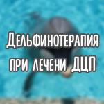 дельфинотерапия при дцп